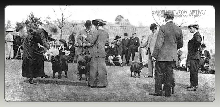 1914 House and Garden Dog shows...rare