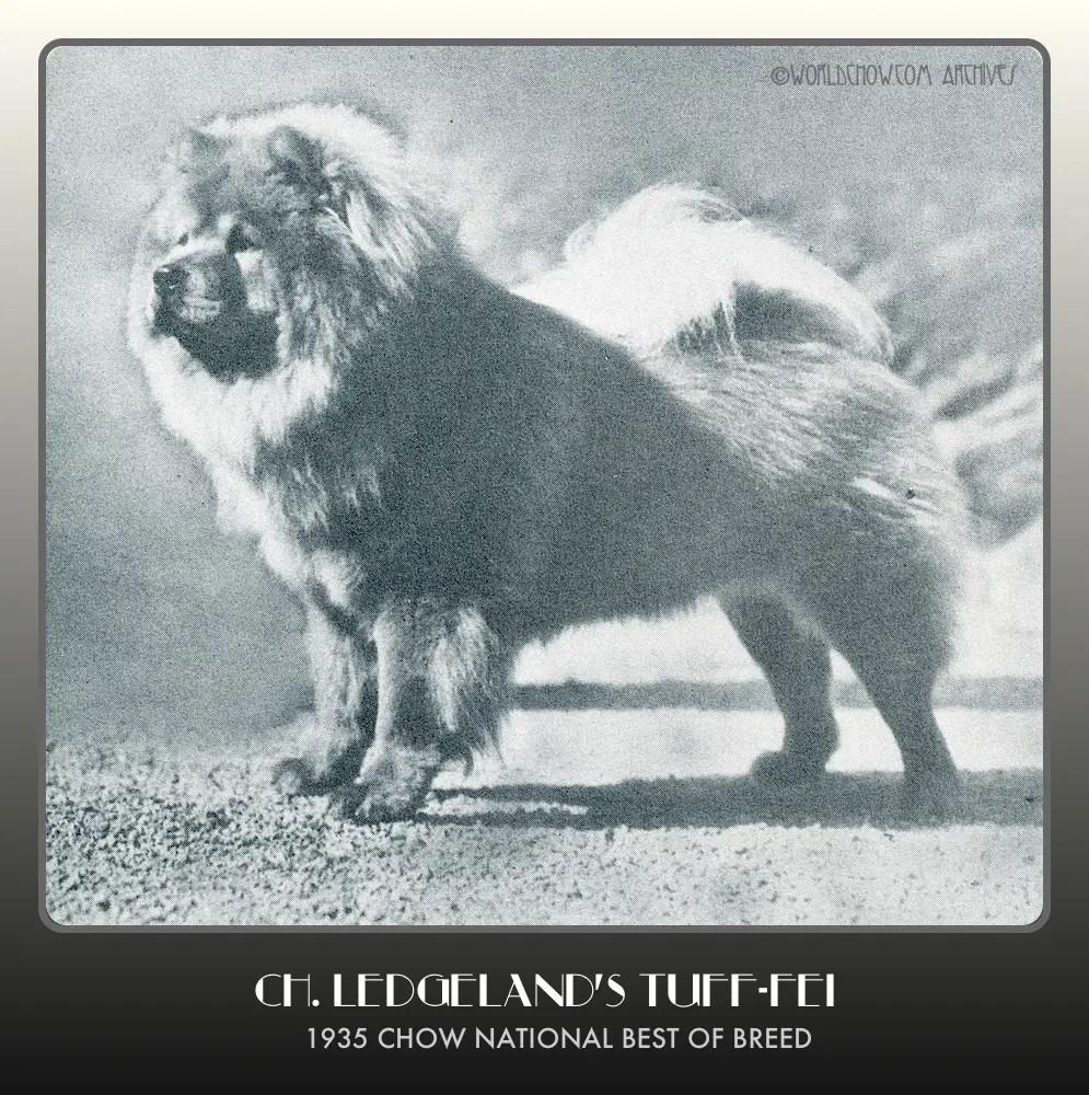 1935 Ch. Ledgelands Tuff Fei