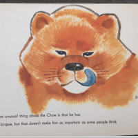 1940'S THE LION THAT WASN'T  CHILDREN'S BOOK