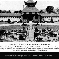 FAR EAST KENNELS TEMPLE OF CHOWS