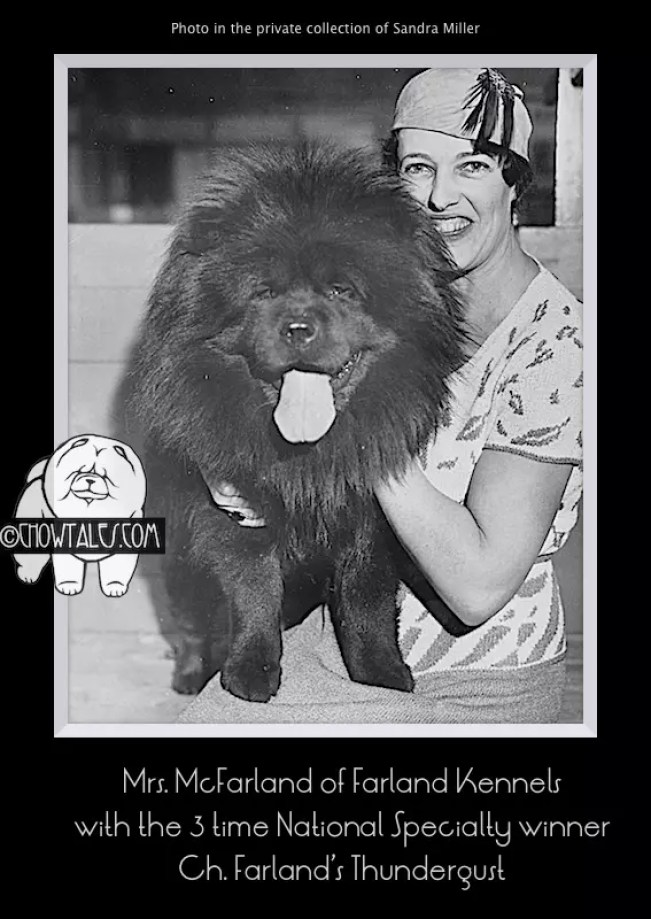 Farland Thundergust MrsMcFarland - Version 2