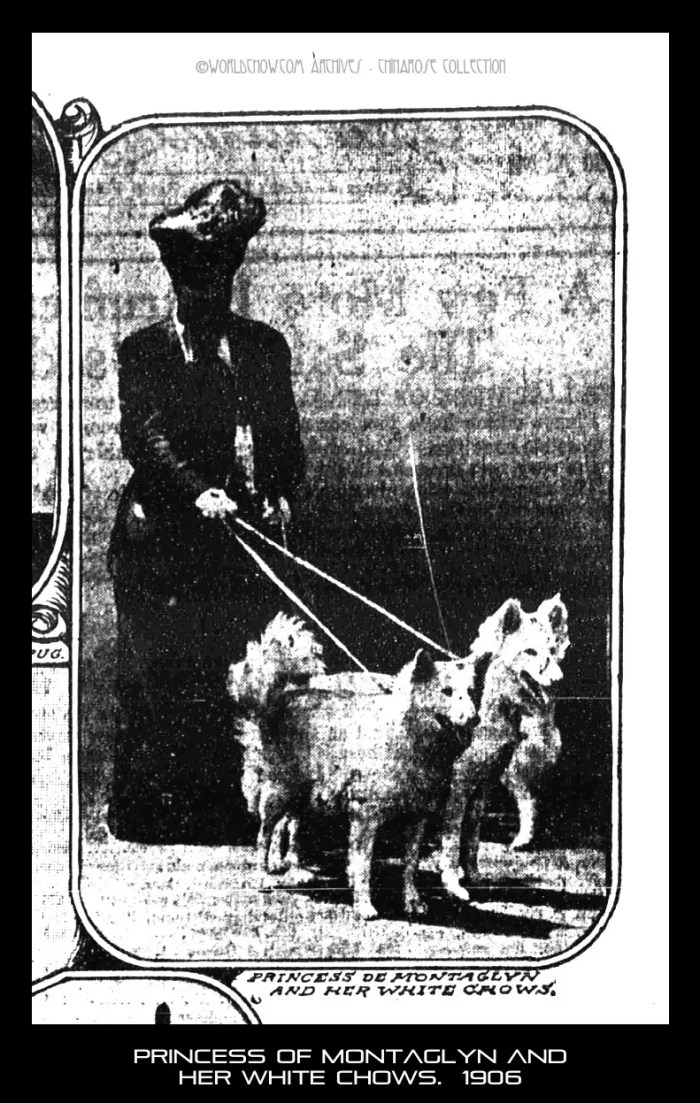 Princess of montaglyn and her white chows. 1906, The Sun,Sunday August 26