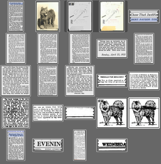 Above is just a small sampling in my desktop archives of articles I have accumulated on Ming Toy
