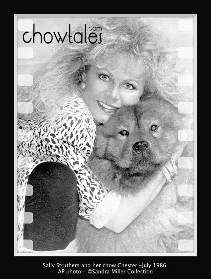 Sally Struthers wire-press photo - Version 2 (1 of 1)