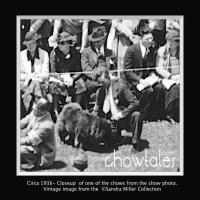 RARE 1936 Dog show photo Chow entry revealed