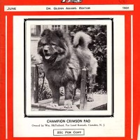 VINTAGE – THE DOG NEWS MAGAZINE-CHOW FEATURE ARTICLES AND COVERS