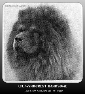 1938 CHOW NATIONAL WYNDCREST HANDSOME