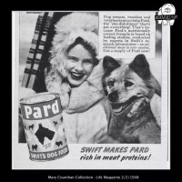 GALLERY – Chows in Vintage Advertising
