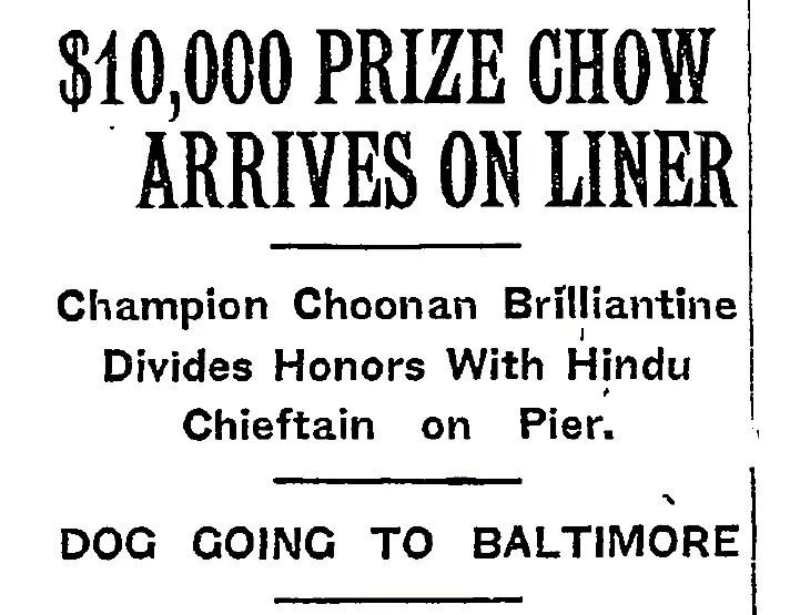 1925 Brilliantine arrives on liner5 part.jpg 22016-01-31