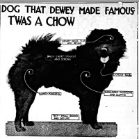 1913 ARTICLE- THE DOG THAT ADMIRAL DEWEY MADE FAMOUS WAS A CHOW
