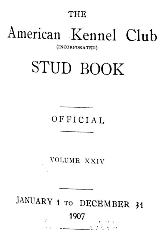 1907 akc stud book