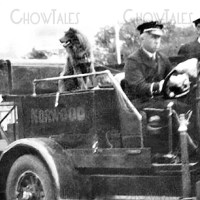 RESTORATION – 1929 Chow in Fire Engine at Saranac Lake NY Firemans' Convention – Norwood engine