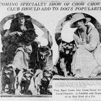 1918 ARTICLE- Rare images of breeders and chows.  Mention of first Chow specialty to come in 1920