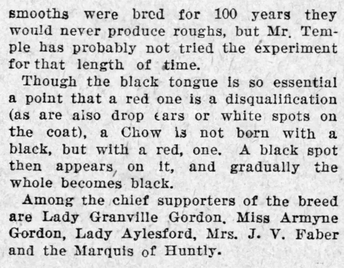 1898-d-gordon-chow-fad