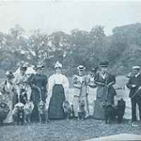 Circa 1896- Photo of puppy class at the Ladies Kennel Association show – England