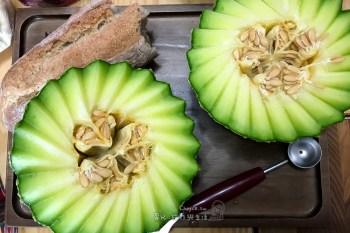 派對必備好用工具 melon baller 秒做繽紛水果球