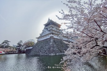 日本超有梗百城之小倉城 好玩好多互動遊戲 櫻花季節超華美