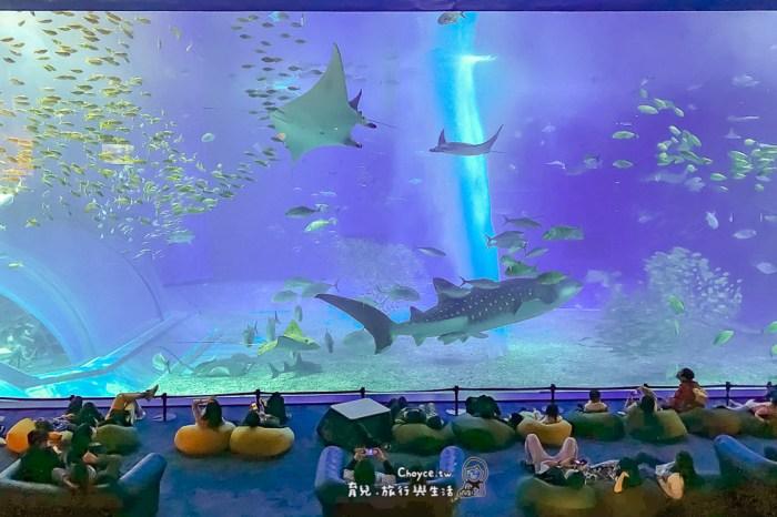 沖繩必訪 海洋博公園 美麗海水族館 Churaumi 晚鳥票相對便宜又好逛