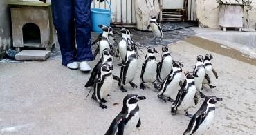 福岡市立動植物園科學園 Fukuoka City Zoo 日本親子景點推薦