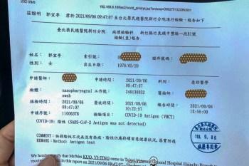 赴美前準備抗原檢測 榮總新竹分院免預約1500元/人 30分鐘出報告