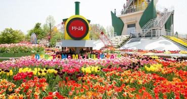 Tonami tulip fair 春季最盛大美麗 富山礫波鬱金香公園 堂堂登場