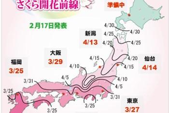 (日本) 賞櫻情報揭露,跟著Choyce前往靜岡河津町賞日本最早開的櫻花吧!