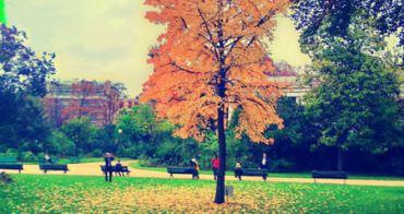 (法國巴黎) 深秋紅艷 楓情萬種 美哉巴黎