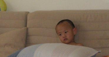 子鈞的好朋友-藍白紋枕頭