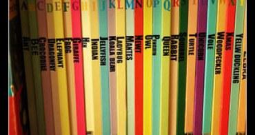 (小小孩愛閱讀) A~Z Picture Books英文字母繪本(Choyce最想藏私的一套書)