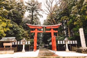 新潟最靈驗能量勝地 彌彥神社(北方由布院)新年初詣影片 弥彦神社