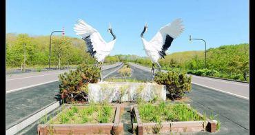 (日本北海道) 親子遊道東 樂無限@釧路自然生態之旅 認識丹頂鶴
