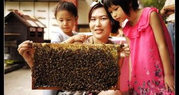 (台灣好好玩) 宏基蜜蜂生態農場 子喬子鈞與蜜蜂零距離