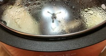 (日本購物推薦) Recolte小電鍋 烤盤,蒸籠,煎盤,章魚燒,多工一體 小家庭適用 recolte Pot DUO(ポットデュオ) Esprit(エスプリ)