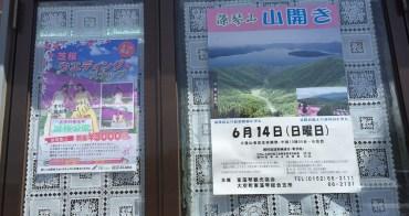 北海道大地上粉紅色花毯 大空町東藻琴芝櫻公園 粉紅紫黃白橘 各種深淺不一的浪漫花毯