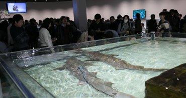 (大阪觀光推薦) EXPO CITY NIFREL(ニフレル)活生生的海遊館 互動式海洋與陸地動物大集合