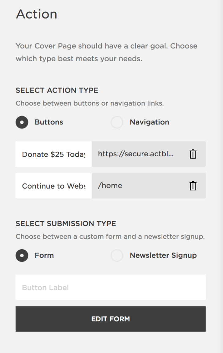 "Squarespace's ""Action"" panel, which lets you choose between buttons/navigation, and a general form or newsletter signup."