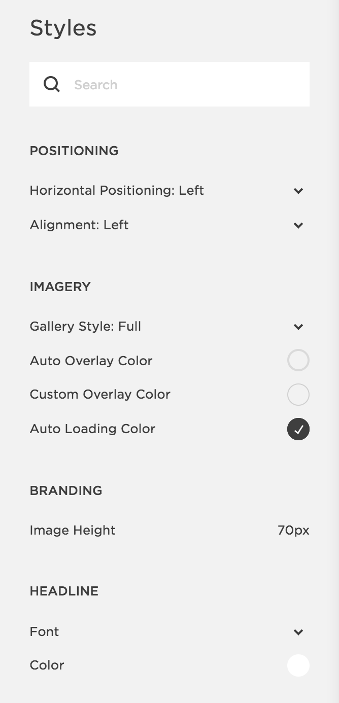 "Squarespace's ""Style"" panel, which displays options for customizing your site styles."