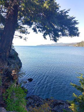 Flathead Lake View