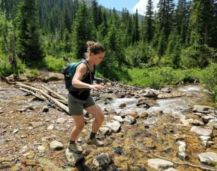 Robin crossing the creek