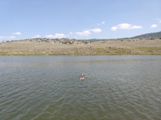 Swimming at Stagecoach Reservoir