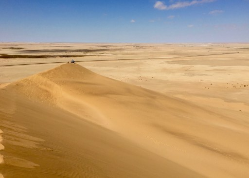 And out into the Namib Desert, at more than 55 millions years, thought to be the oldest on the planet.