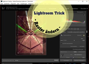 Lightroom-Trick Raster ändern