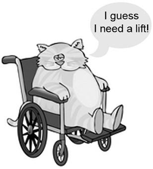 Fat Orange Tabby Cat in a Wheelchair Clipart