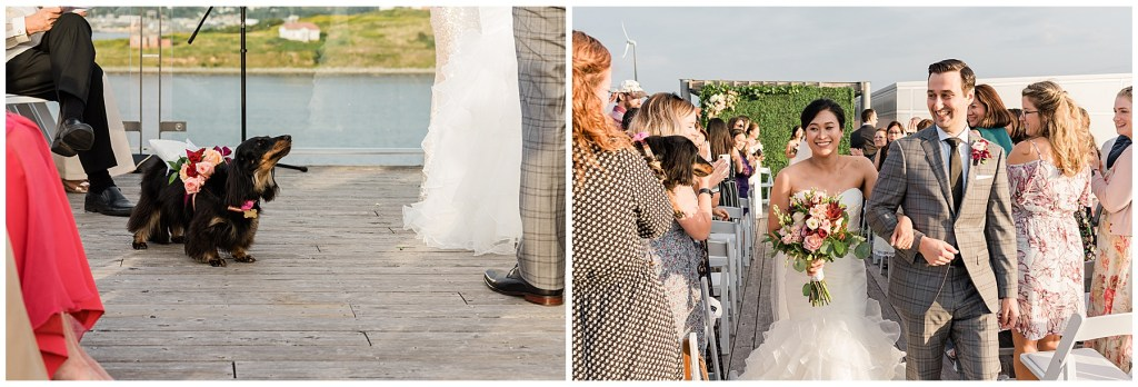 Halifax Seaport Farmers Market Wedding Venue Nova Scotia Rooftop Ceremony