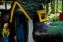 Enchanted Forest-5