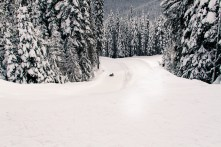 Manning Park at Christmas-19