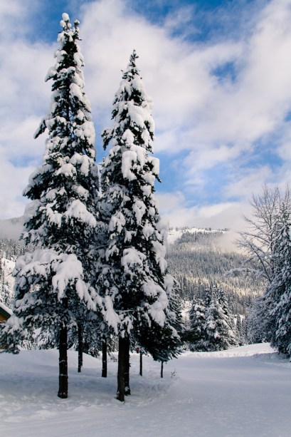 Manning Park at Christmas2-10