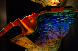 chihuly-17
