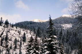 christmas-at-manning-park-7