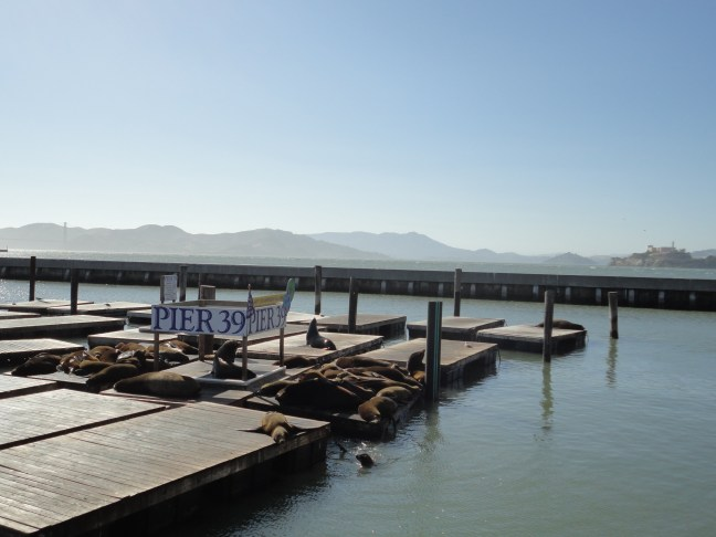 Picture of Fisherman's Wharf